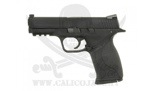 M&P 9 Big-Bird-001