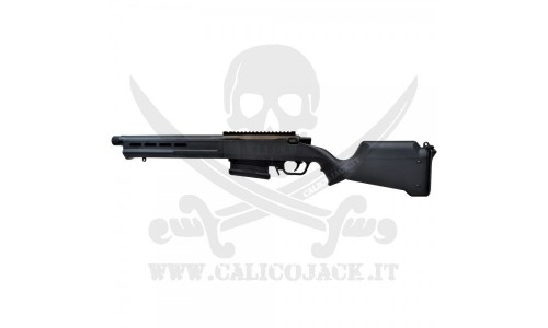 AMOEBA AS-02 STRIKER (AR-AS02)